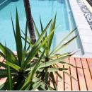 fun-pool-family-spaobad-2